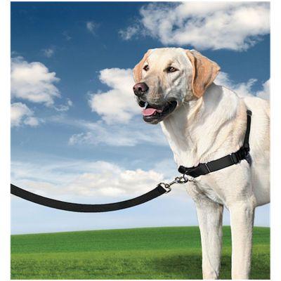 Arnés Easy Walk para perros