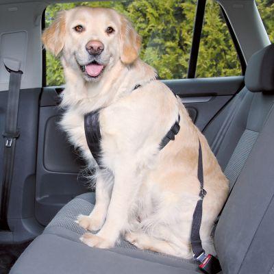 trixie ceinture de s curit pour chien zooplus. Black Bedroom Furniture Sets. Home Design Ideas