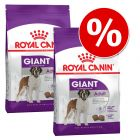 Dwupak Royal Canin Giant, 2 x 15 kg