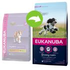 Eukanuba Growing Puppy Medium Breed Pui