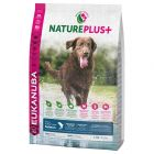 Eukanuba NaturePlus+ Adult Large Dog saumon pour chien