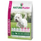 Eukanuba NaturePlus+ Adult Small Dog agneau pour chien