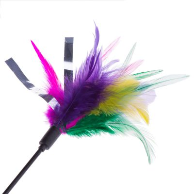Feather Waggler Cat Toy