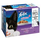 Felix Junior pouches 12 x 100 g