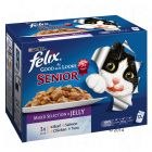 Felix Senior As Good As It Looks