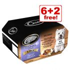 150g Cesar Wet Dog Food Trays - 6 + 2 Free!*