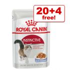 85g Royal Canin Wet Cat Food Pouches - 20 + 4 Free!*