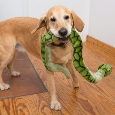 Taste Of The Wild Dog Food Reviews >> Giant Snake Dog Toy | Great deals at zooplus!