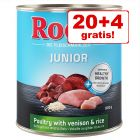 20 + 4 gratis! Rocco Junior 24 x 800 g