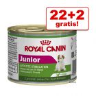 22 + 2 gratis! Royal Canin Mini, 24 x 195 g