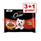 3 + 1 gratis! 4 x 100 g Cesar Selection in Sauce Portionsposer