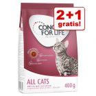 2 + 1 gratis! 3 x 400 g Concept for Life