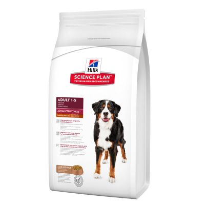 Hill's Canine Adult Large Breed Lamb & Rice