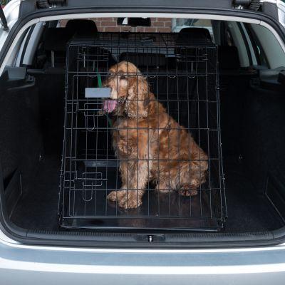 transportkasse til dyr