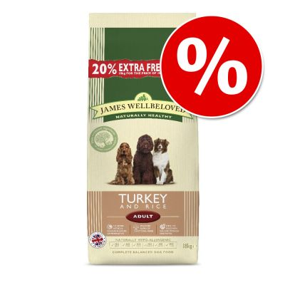 Best Prices For Burns Dog Food