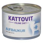 Kattovit Convalescence (Energy Plus) 6 x 175 g