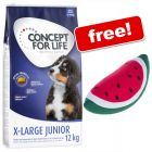 12kg Concept for Life Dry Dog Food + Watermelon Floating Dog Toy Free!*