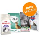 2,6 / 2,7  kg Probierpaket: Royal Canin, Concept for Life, Hills & Pro Plan