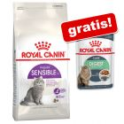 3,5 / 4 kg Royal Canin + 12 x 85 g Royal Canin Nassfutter gratis!