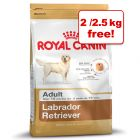 12kg Royal Canin Breed + 2kg Free!*