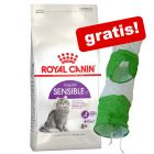 10 kg Royal Canin + kattetunnel gratis!