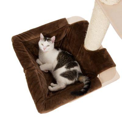 wildcat katzenfutter kaufen