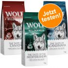 Lot mixte Wolf of Wilderness Adult