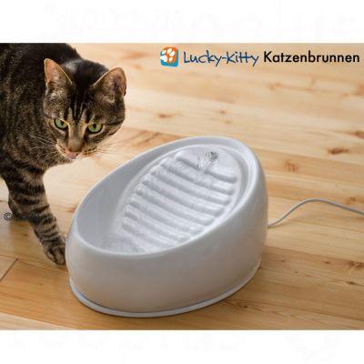 Lucky Kitty, keraaminen vesiautomaatti