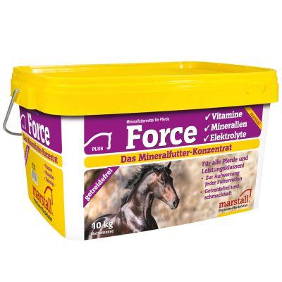 pferde leckstein selber machen rezepte
