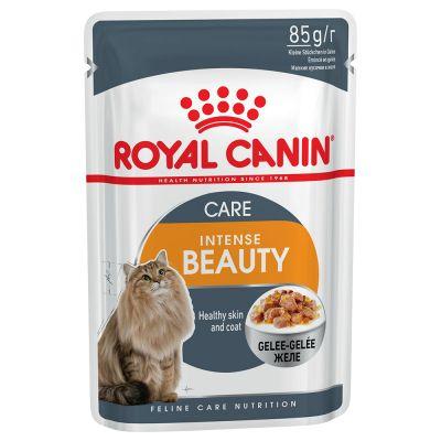Miješano ekonomično pakiranje Royal Canin  žele i umak 24 x 85 g