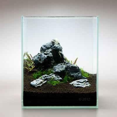 Mini Landscape Seiryu Rock