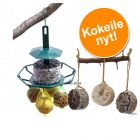Mixed Feeder + ravintorenkaat erikoishintaan!