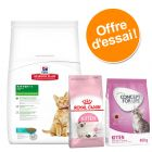 Offre découverte Hill's Science Plan Feline Kitten + Royal Canin + Concept for Life
