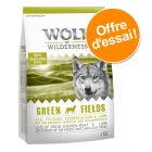 Offre découverte Wolf of Wilderness