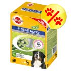 Pedigree Dentastix Daily Fresh, M