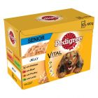 Pedigree Senior Pouch in Jelly Multipack