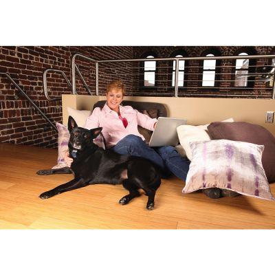 petsafe spray anti bell halsband. Black Bedroom Furniture Sets. Home Design Ideas