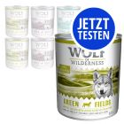 Probierpaket: 6 x 800 g Wolf of Wilderness Mix