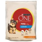 Purina ONE Mini Junior Pollo & Riso