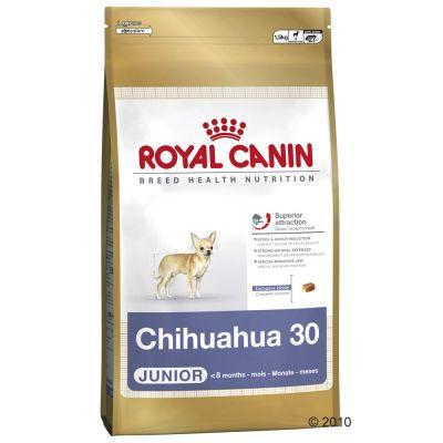 Royal Canin Breed Chihuahua Junior