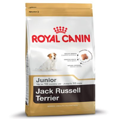 Royal Canin Breed Jack Russell Junior