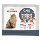 Royal Canin Hairball & Intense Beauty 4 x 85 g - Pack de prueba