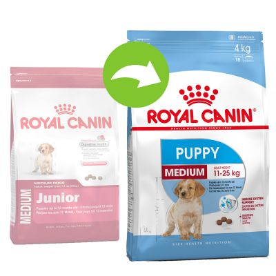 royal canin medium puppy w sklepie zooplus. Black Bedroom Furniture Sets. Home Design Ideas