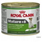 Royal Canin Mini Mature + 8