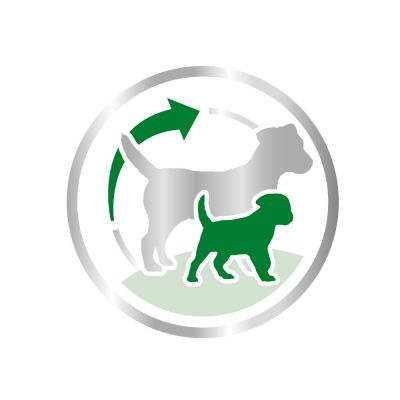 royal canin mini starter madre y cachorro pienso para perros. Black Bedroom Furniture Sets. Home Design Ideas