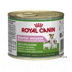 Royal Canin Starter Mousse pour chien Mother & Babydog