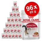 Royal Canin Super-Sparpaket 96 x 85 g