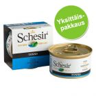 Schesir in Jelly 1 x 85 g
