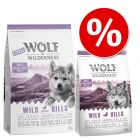 Set transition! Wolf of Wilderness Wild Hills - Anatra - verso la vita adulta