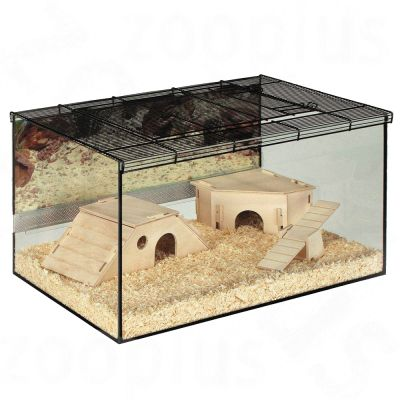 Small Pet Terrarium Kerry